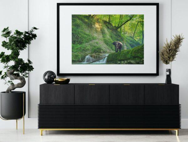 waterfall-elephant green mountains