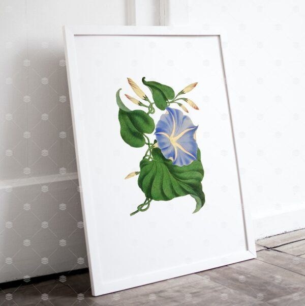 Set of 3 Vintage Blue Floral Wall Art