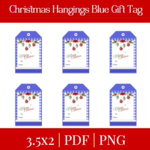 Christmas Hangings Blue Gift Tag +Free Gift